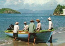 LES SAINTES-BACK FROM FISHING - Pesca