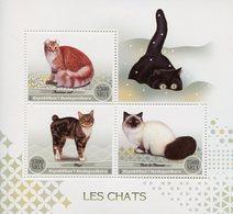 Madagascar 2017 MNH Domestic Cats American Curl Manx Birman Cat 3v M/S Chats Pets Stamps - Domestic Cats