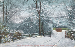 YORKS - SCARBOROUGH - SNOW SCENE IN LADY EDITH'S DRIVE 1912 Y2133 - Scarborough