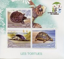 Madagascar 2017 MNH Turtles 3v M/S Tortues Reptiles Turtle Stamps - Turtles
