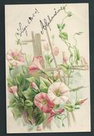 Très Jolie Lithographie Gaufrée. Plante Grimpante Rose. - Fleurs