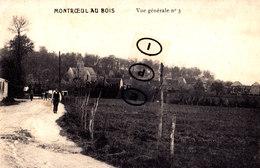MONTROEUL-AU-BOIS - Vue Générale N°3 - Frasnes-lez-Anvaing