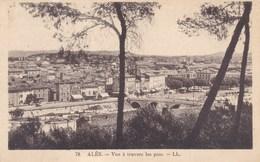Alès, Vue A Travers Les Pins (pk53294) - Alès