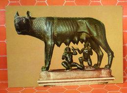 Lupa Musei Capitolini Roma Cartolina 1979 - Sculture