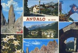 Andolo - Trento - 4596 - Formato Grande Viaggiata – E 9 - Trento