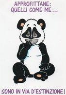 ORSI PANDA - Ours