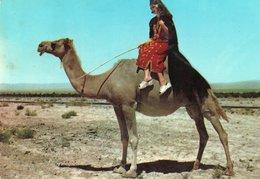 ARABIAN DESERT-COSTUMES-SYRIE-ALEP - Costumes