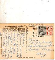 1965  CARTOLINA  CON ANNULLO CHICAGO - Stati Uniti