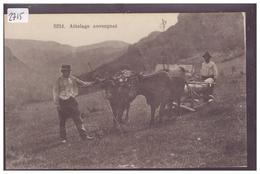 EN AUVERGNE - ATTELAGE AUVERGNAT - TB - Auvergne