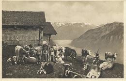 SUISSE WEHRLIVERLAG KILCHBERG CPA TBE - Suisse