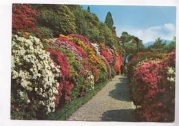 LAGO DI COMO, Villa Carlotta, Viale Delle Azallee, Italy, Used Postcard [22367] - Como