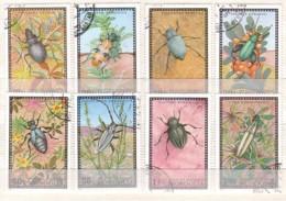 Käfer , Mongolei  685/92 , O  (4032) - Insects