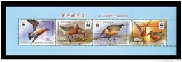 North Korea 2015 Mih. 6247/50 Fauna. WWF. Birds. Red Knot (booklet Sheet) MNH ** - Corée Du Nord