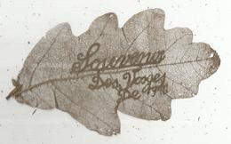 Militaria , Souvenir Des VOSGES De 1916 SUR FEUILLE , Frais Fr 1.65 E - 1914-18