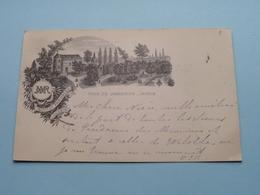 Institut PARIDAENS - Tour De JANSENIUS - Jardin / Anno 1903 ( Zie/voir Foto ) ! - Leuven