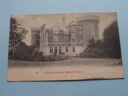 Château D'AHIN - Vallée De La Meuse ( 6 ) Anno 1901 ( Zie/voir Foto ) ! - Hoei