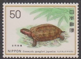 Japan SG1422 1976 Nature Conservation 9th Series,Tortoise, Mint Never Hinged - Unused Stamps
