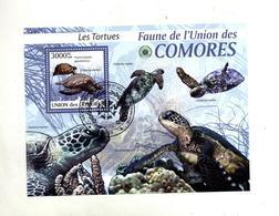 Bloc Tortue - Comores (1975-...)