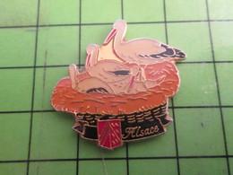 517 Pins Pin's / Rare Et De Belle Qualité  THEME : ANIMAUX / CIGOGNES ALSACE OISEAU NID - Animals