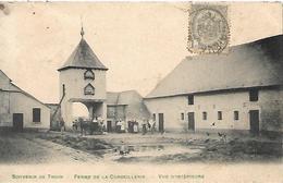 Souvenir De Thuin -- Ferme De La Corbeillerie-- Animée --carte Rare-top Carte - Thuin