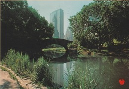 18/12/ 166 - CENTRAL  PARK NEW YORK  CITY  - THE STARKLY  MODERN GENERAL MOYORS -C P M - Central Park