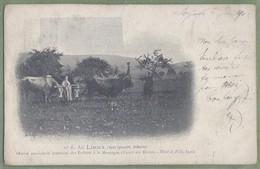 CPA Dos Précurseur - ARDECHE - SAINT SYLVESTRE - Thème Agriculture - AU LABOUR - Attelage De Boeufs - France