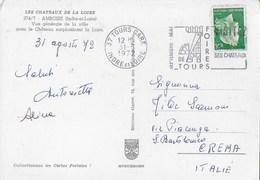 """FRANCIA - ANNULLO A TARGHETTA """" VISITEZ FOIRE DE TOURS"""" DA TOURS-GARE 31.08.1972 SU CARTOLINA AMBOISE - Francia"""
