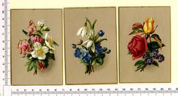 3 PETITES CARTES  CHROMOS LITHOGRAPHIES.....13.5 / 10 Cm   ...FLEURS.DIVERSES - Vieux Papiers