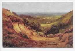 The Gravel Pit, Above Gomshall. - Sutton Palmer - Salmon 1678 - Surrey