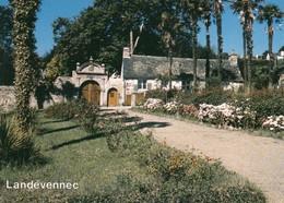 CP - Landévennec - Finistère 29 - Non Circulé - Landévennec