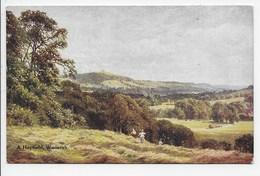 A Hayfield, Wonersh - Sutton Palmer - Salmon 1685 - Surrey