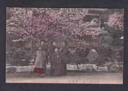 Vente Immediate Japon Japan Nagasaki Banshoyen ( Garden ) - Japan