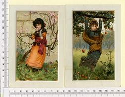 2 CARTES CHROMOS LITHOGRAPHIES....13.5 / 9 Cm   ..PETITES FILLES AU VERGER - Vieux Papiers