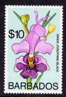 BARBADOS - 1975 $10 ORCHID STAMP WMK W14 S/W FINE MNH ** SG 524 - Barbados (1966-...)