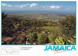 1 AK Jamaica * Pedro Plains In Saint Elizabeth Ein Landkreis (parish) Im Südwesten Von Jamaika * - Jamaica