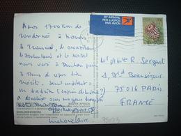 CP TP PROTEA ARISTATA 10c OBL.MEC.6 VIII 1979 - Afrique Du Sud (1961-...)
