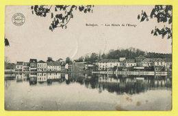 * Watermaal Bosvoorde - Watermael Boitsfort (Bruxelles) * (Collection Bertels) Les Hotels De L'étang, Hotel La Belle Vue - Watermaal-Bosvoorde - Watermael-Boitsfort