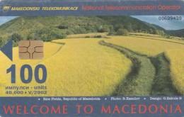 Macedonia - Rice Field / ISDN - Macedonia