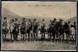 CHAMBERY - LES MULETS DES CHASSEURS ALPINS - MULETIER - MILITAIRES - BEAU PLAN - Chambery