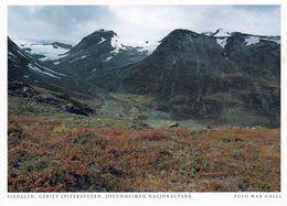 1 AK Norwegen * Visdalen - Das Gebiet Spiterstulen Im Jotunheimen-Nationalpark - Das Höchste Gebirge Norwegens * - Norwegen