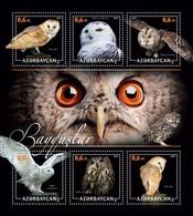 Azerbaijan. 2017 Owls. - Azerbaïjan
