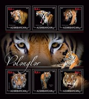 Azerbaijan. 2017 Tigers. - Azerbaïjan