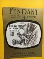 9177 -  Fête Cantonale De Gymnastique Charmexy 1992  Suisse 2 étiquettes - Etiquettes