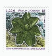 VP6L7 TAAF FSAT Antarctic Neufs**  Flore Chou De Kerguelen 2002 N 333 - Terres Australes Et Antarctiques Françaises (TAAF)