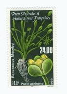 VP6L7 TAAF FSAT Antarctic Neufs**  Flore Ranunculus PA146  1998 - Poste Aérienne