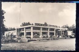Halsteren - Hotel Cafe De Ram - Heineken Bier - 1955 - Nederland