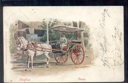 Nederlands Indië - Java - Dogkar - Paard - 1904 - Nederland