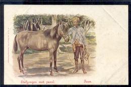 Nederlands Indië - Staljongen Met Paard - 1900 - Nederland