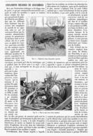 EXPLOSIONS BIZARRES DE CHAUDIERES   1900 - Technical