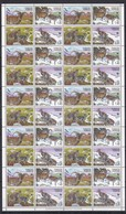 W750 2005 TAJIKISTAN WWF FAUNA WILD ANIMALS BHARALS !!! 1 BIG SH MNH - W.W.F.